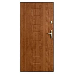 Drzwi Gerda WX10 wzór 23