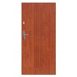 Drzwi Gerda WX10 NOVA wzór VA9